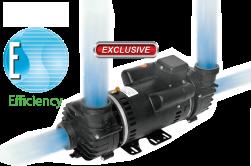 Coleman dual wet end pump